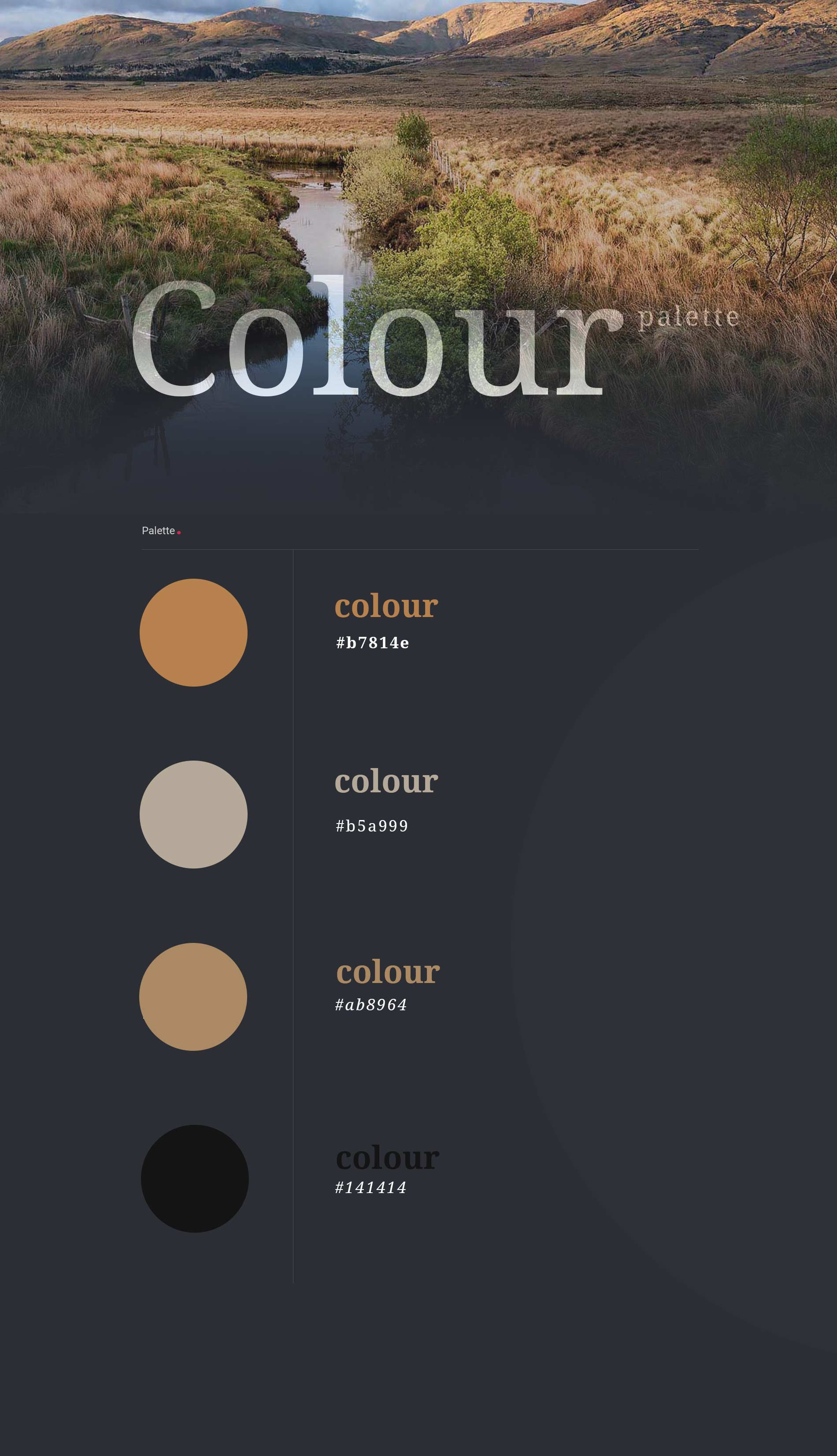 colour-palette-variation-portfolio