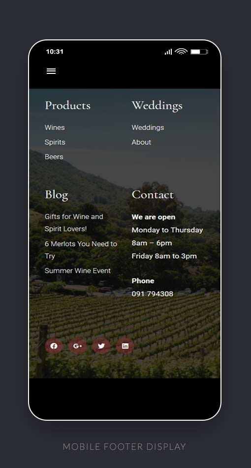 Mobile Footer Display