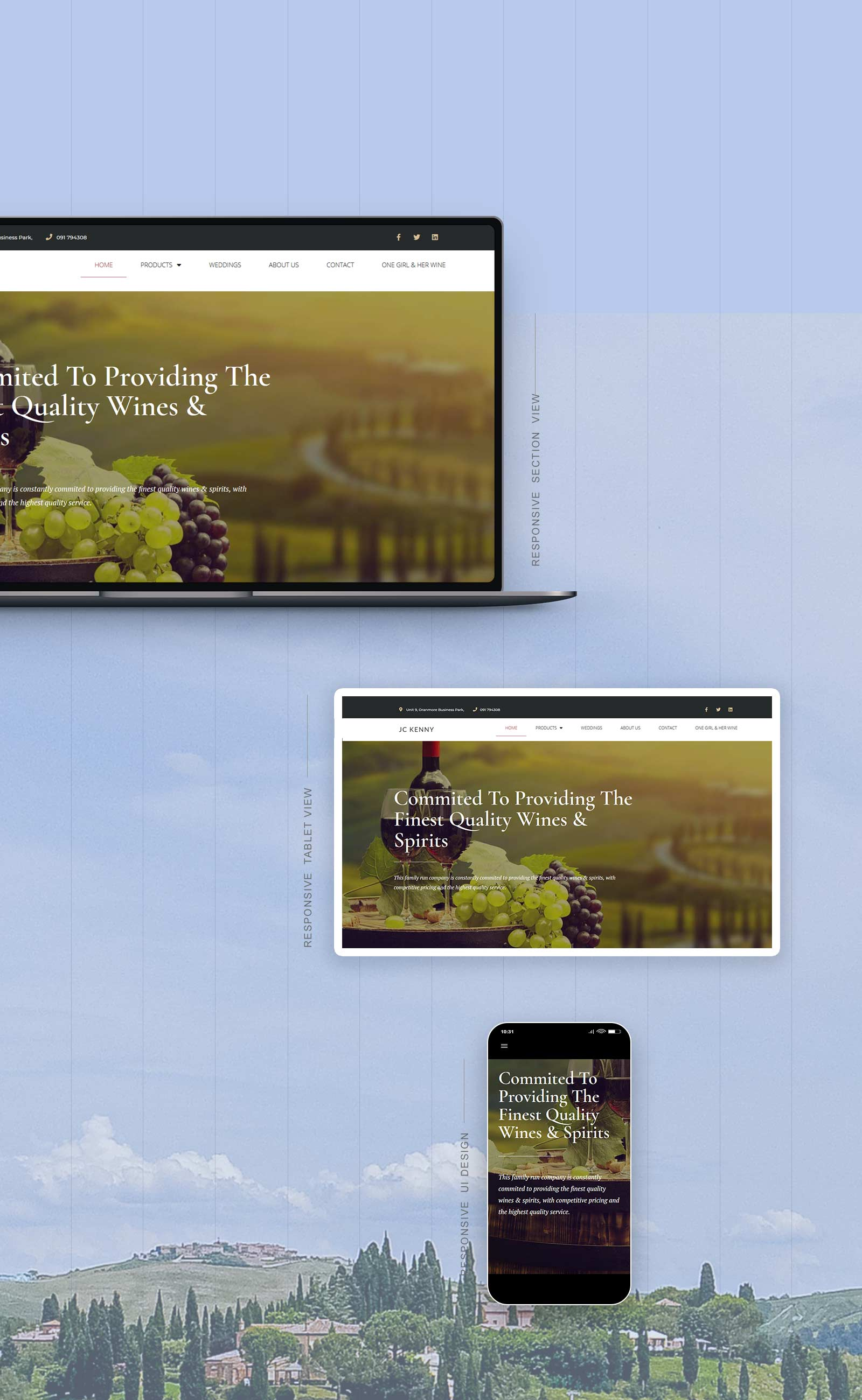 New website created for irish distribution company 1