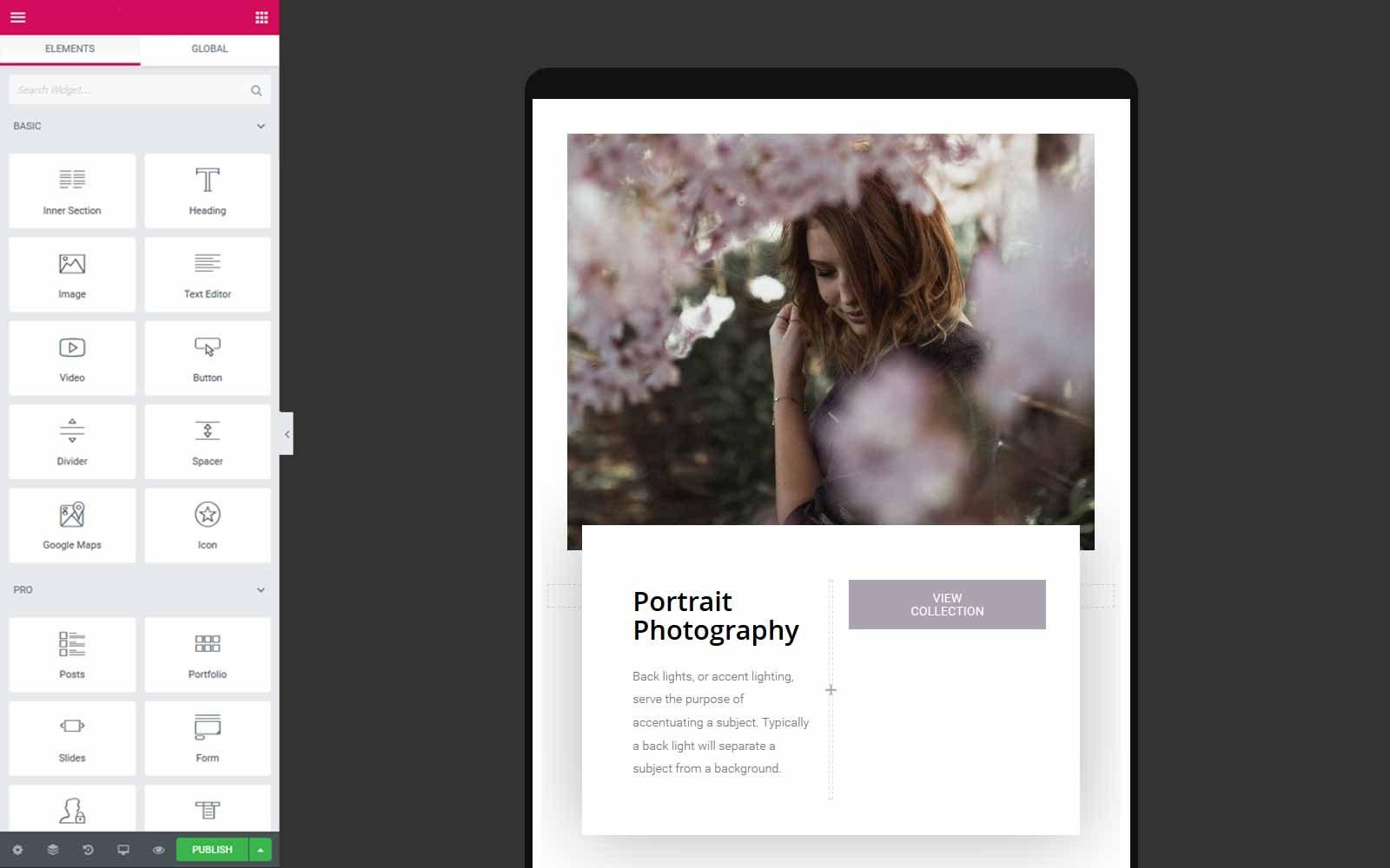 wordpress-elementor-editor